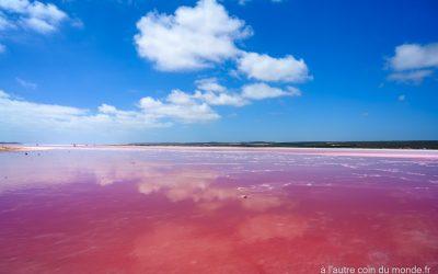 Le lac rose de la côte ouest australienne, à hutt lagoon près de port Gregory