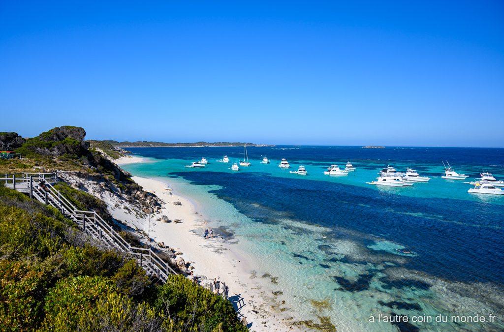 Le centre ville de Perth et Rottnest Island, l'île des quokkas – derniers jours de notre road trip sur la côte ouest australienne